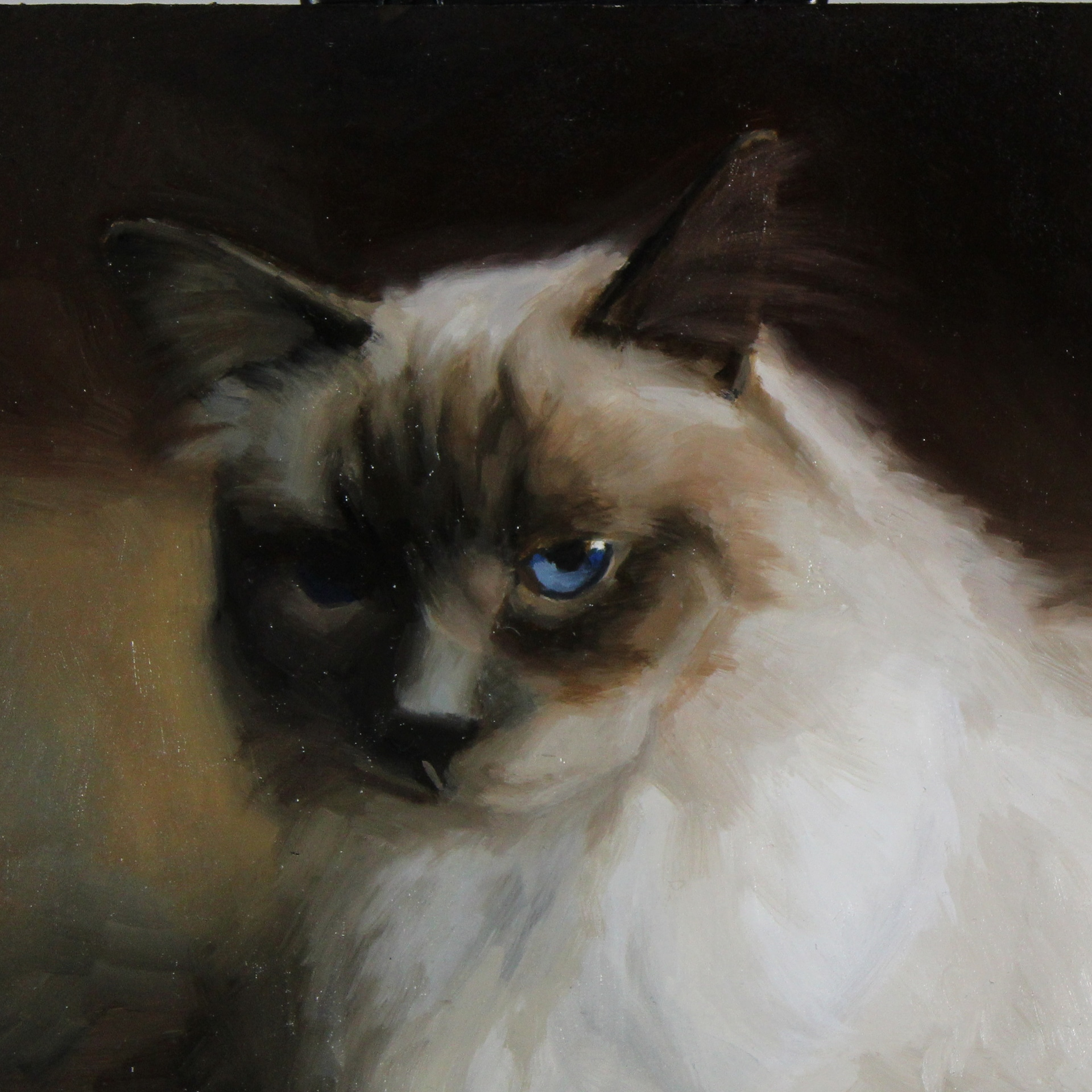 Example of pet cat painting