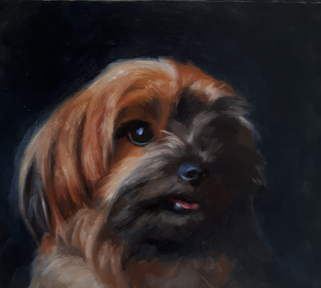 Example of pet dog painting