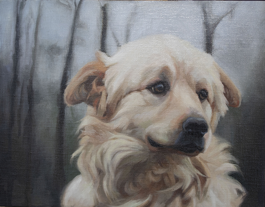 Oil painting dog portrait