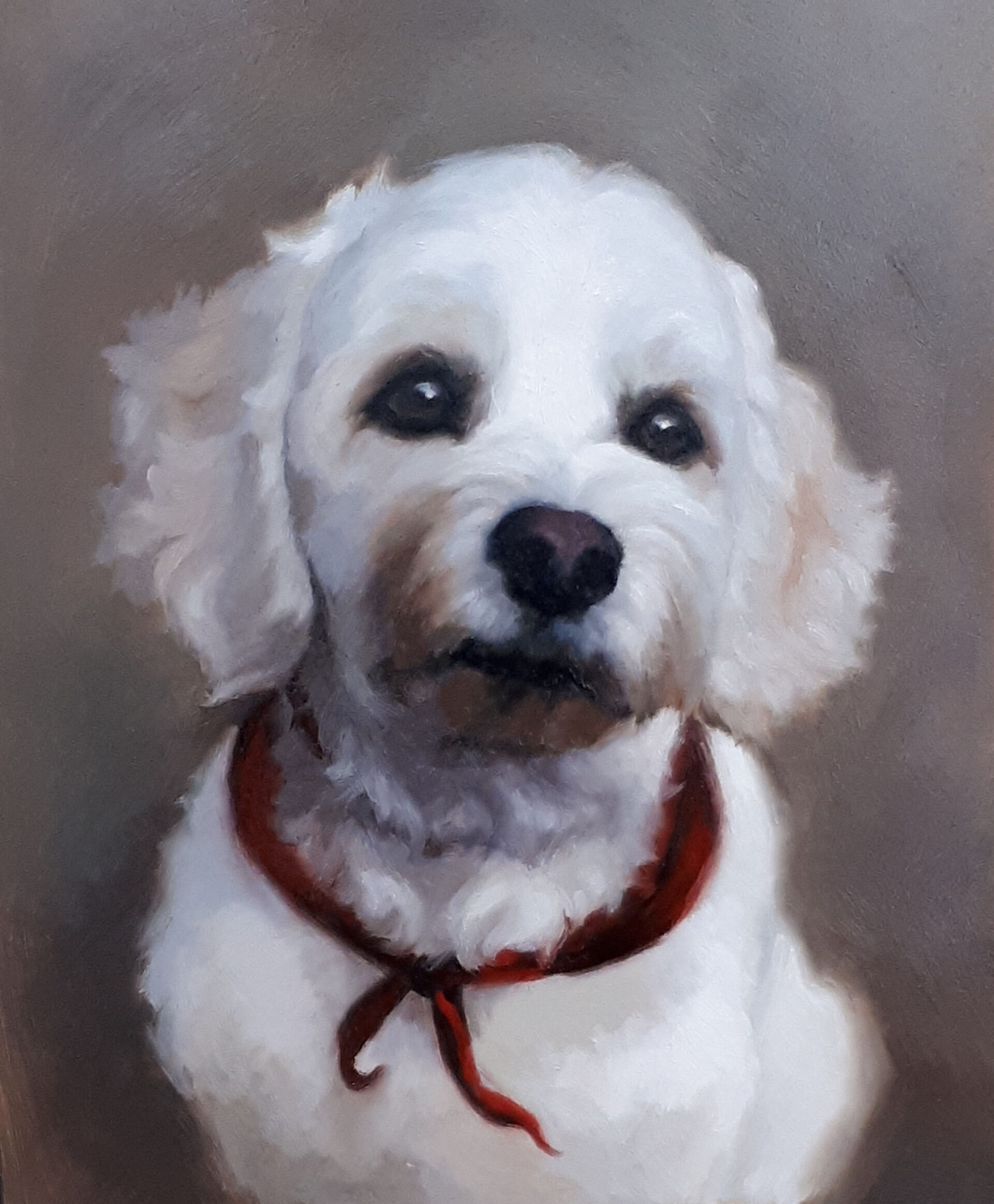 Example of dog portrait